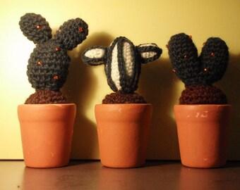 Cactus Amigurumis
