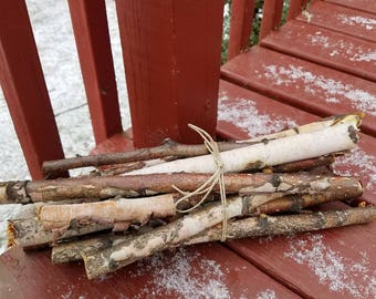 Bundle of 12 Birch Branches Decorating Weddings Rustic