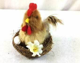 Brown Chicken In A Nest With Eggs Scrapbooking Nest Craft Birds Small Bird's Nest Bird Nest Craft Birds Nest