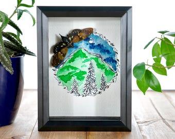 Real Cicada Shadowbox,Watercolor Wall Art,Shadowbox Taxidermy,Insect Taxidermy, Insect Wall Art, Cicada Art, Arizona,Watercolor Insect Art