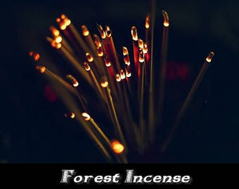 Forest Incense 100 Sticks
