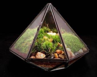 Moss Terrarium, Geometric Terrarium, Terrarium Gift, Diamond Terrarium, Desktop Plant, Industrial Decor