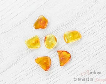 2498/6 // Baltic Amber Beads, 6 pc