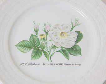 Set of Ten Beautiful Vintage Porcelain Pastry Plates, Five Different Rose Decors from P J Redoute, Hutschenreuther, Germany