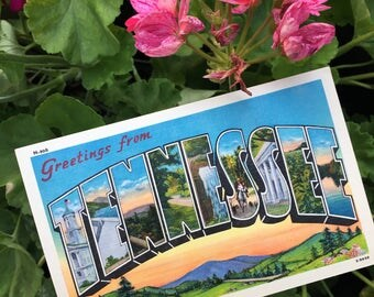Vintage Tennessee Post Card FREE SHIPPING
