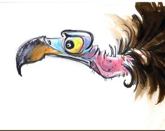 VULTURE Wall Art - Animal Art Print - David Colman Original Illustration