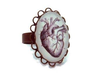 Heart Anatomy bronze Adjustable ring