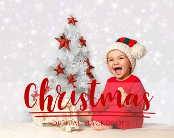 40 Christmas Digital Backdrops