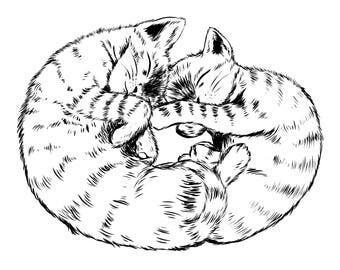Sleeping Kittens — Art Print