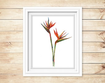 Bird of Paradise Flower Watercolor Print