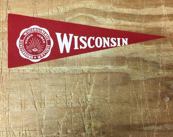 1950's Vintage Wisconsin badgers College University Mini Pennant Flag Banner
