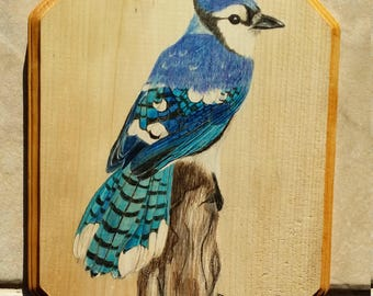 "Blue Jay 12x9"" wood plaque"