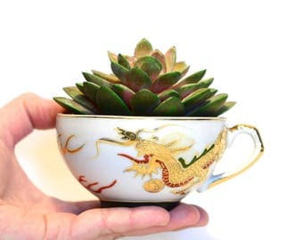 SALE - 75% OFF Unique Vintage Succulent Planter, Succulent Plant, Succulent Pot, Succulent in Chinese Tea Cup