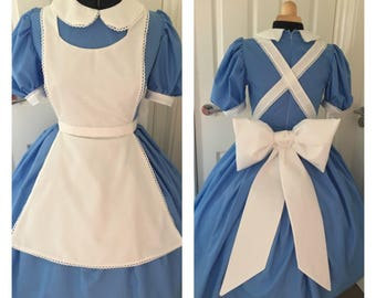 Alice in wonderland park inspired adult costume