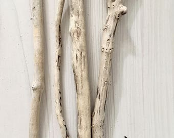 4 small branches of drift wood - wood seawood Driftwood branches