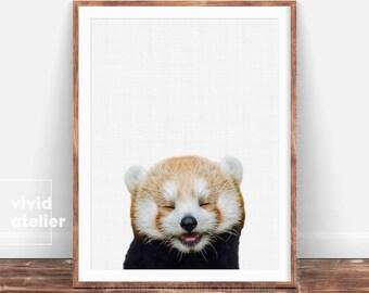 Red Panda Print, Nursery Art, Animal Prints, Baby Animals, Forest Animal, Woodlands Animal, Nursery Art Decor, Animal Photography, Download