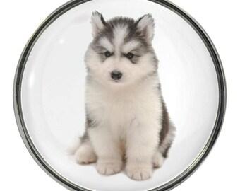Husky Puppy Image On Metal Pin Badge