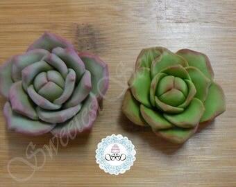6 x  Edible Fondant Succulent cupcake toppers