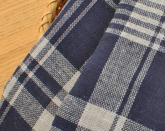 Blue Gingham Cotton Fabric MT050