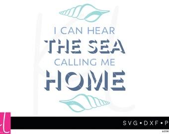 Summer svg, Sea svg, Beach svg, Seashell svg, Vacation Home svg, Beach Life svg, Shore svg