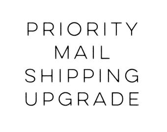 Priority and Priority Express shipping - please purchase in addition to your initial order