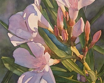Original watercolor painting, Summerfield Sunset 16 x 22 Oleander Floral detailed Botanical art collectos and decor by Phyllis Nathans