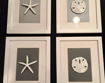 Starfish and Sand Dollar Art