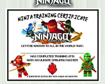 INSTANT DL- Ninjago Training Certificate - NinjaGo - Ninjago Acadamy - Ninjago Birthday Party -Printable (not personalized)