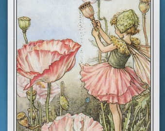 The Shirley Poppy Fairy, Cicely Barker, Book Plate Print