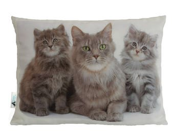 Maine Coon Mum and Kittens Cat Cushion, Handmade By Creature Comforts Direct - Cat Gift, Rectangular, Cat Pillow, Animal Cushion