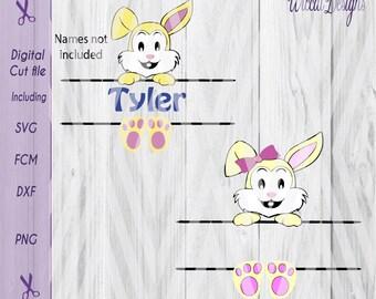 Easter banner svg, Easter svg,  name banner svg, Easter monogram svg, Easter bunny svg, fcm cut file, Easter diy, cricut svg, scanncut