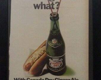 Canada Dry Ginger Ale, Hot Dogs, Vintage Ad, Ephemera, Collage, Mixed Media, Kitchen Decor