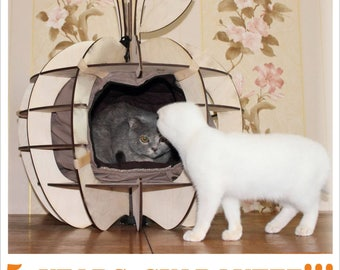 cat house shelter rescue outdoorm Cat Bed Kitten Furniture Cat House Cushion Pillow  Pet Bedding Wooden Cat Furniture Cat Cave cat tree