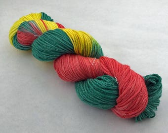 Hand Painted DK Weight 75/25 Superwash  Merino and Silk Yarn - 230 yards - Spring Feilds