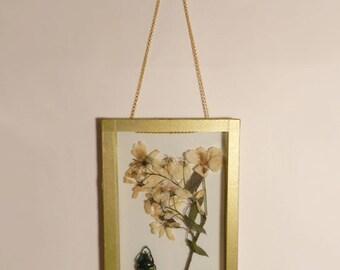 The Herbarium Anderson #4