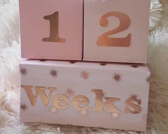 Shaker Photo Baby Blocks, Milestone photo props, Nursery Decor, Infant photos, Rattle blocks