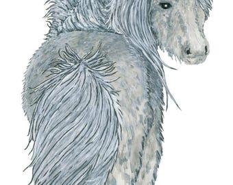 Ltd Edition - A5,A4 & A3 Giclee Print - Original Artwork - Pony