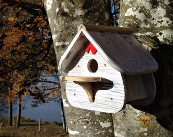 Birds house, colours,