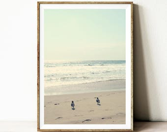 Beach print, ocean wall art, bird print, printable poster, beach wall art, beach wall decor, minimalist photo, print download, beach photo