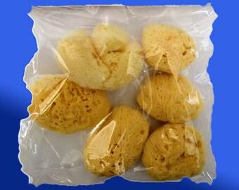 Aegean Bouquet  Natural Sponges