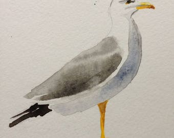 Watercolour Seagull