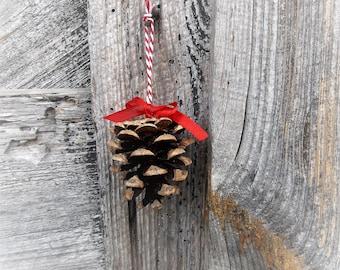 5 decorative pinecones for Christmas