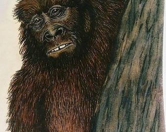 Sasquatch Drawing titled - 'The Peeker'