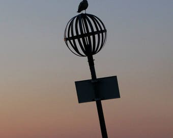 Sunset, Bird, Venice, Wall Art, Decor