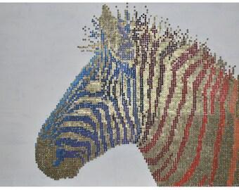 Zebra Screw Art