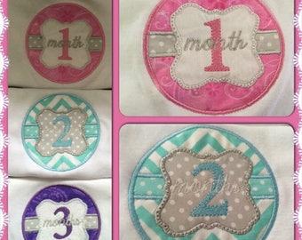 Embroidered month Onesie set 1-12 months