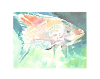 Light Colored Tropical Fish print