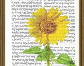 Sunflower on Bible page