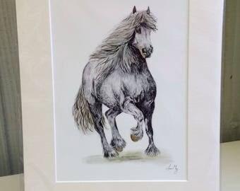 Friesian Horse Print