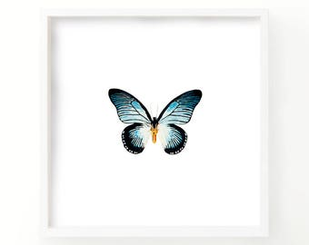 Watercolor Butterfly Print - Living room Decor - Fine Art - Nature Print - Gallery Wall - Blue Butterfly - wall art - Nursery Print - art